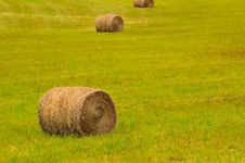 Free Big Bales On Field Stock Photos - 19415803