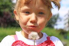 Free Girl Blowing A Dandelion Royalty Free Stock Photo - 19416945