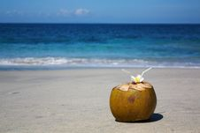 Free Coconut On Tropical Beach Royalty Free Stock Image - 19417016