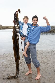 Free Father And Son On Beach Royalty Free Stock Photo - 19418875