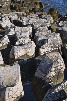 Free Limestone Seashore Royalty Free Stock Photo - 19419405