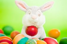 Free Easter Eggs Royalty Free Stock Photo - 19419925
