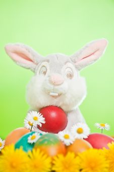 Free Easter Eggs Royalty Free Stock Images - 19419929