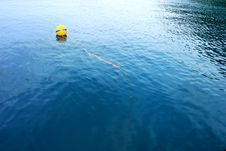 Free Buoyancy In The Sea. Stock Photos - 19422583