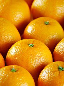 Free Oranges Royalty Free Stock Photo - 19424035
