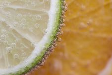 Slice Of Lime With Bubbles Royalty Free Stock Images