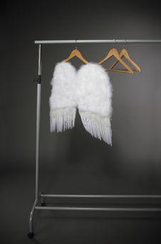 Free White Wings Stock Image - 19426331