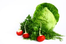 Free Cabbage, Radishes And Parsley. Stock Photo - 19426440