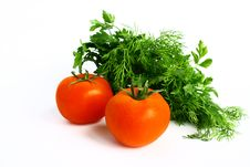 Free Tomatoes, Parsley And Dill. Royalty Free Stock Images - 19426459