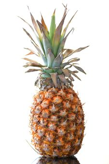 Free Pineapple Stock Photos - 19427353