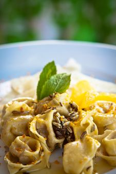 Free Tortellini With Fennel, Orange And Mint. Stock Images - 19428204