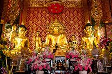 Free Buddha Images Royalty Free Stock Photography - 19428837