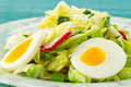 Free Spring Salad Stock Photography - 19431052