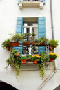 Free Terrace And Window With Flowerpots Royalty Free Stock Photos - 19433508