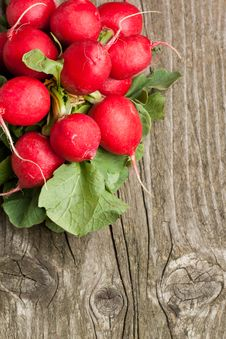 Free Fresh Radishes Stock Photos - 19430043