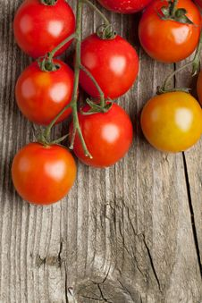 Free Cherry Tomatoes Royalty Free Stock Photography - 19430057