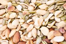 Free Nuts Collection Royalty Free Stock Photo - 19430365