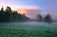 Free Landscape Of The Misty Glade Stock Photography - 19431242