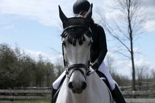 Dressage Rider And Her Horse Royalty Free Stock Images