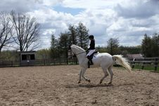 Free Dressage Rider Schooling Her White Horse Stock Photography - 19431732