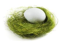 Free Egg In A Nest Over White Stock Image - 19432291