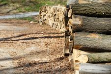 Free Firewood Stock Photography - 19433472