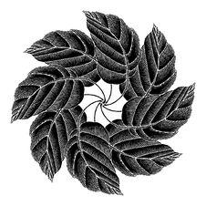 Free Leaves Rosette Black Original Woodcut Royalty Free Stock Image - 19433956