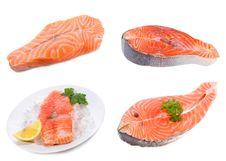 Free Set With Fresh Salmon Steak Stock Photography - 19437422