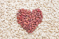 Free Heart Of The Beans. Royalty Free Stock Photo - 19444755