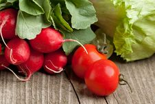 Free Fresh Radishes And Tomato Stock Photos - 19442973