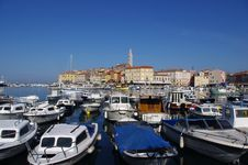 Free Spring On The Adriatic Sea Stock Photos - 19444663