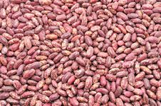 Free Texture Of The Beans Stock Image - 19444831