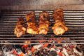 Free Four Roasted Tasty Meat Royalty Free Stock Photos - 19457708