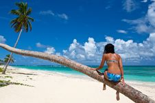 Tanned Woman Sitting On A Palm White Sand Beach Stock Photos