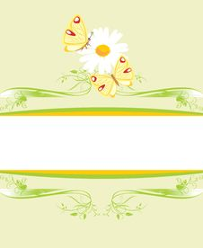 Free Chamomile And Butterflies On The Decorative Frame Royalty Free Stock Photography - 19454257
