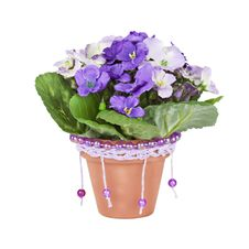 Free Artificial Violet In Ceramic Pots Stock Images - 19454464