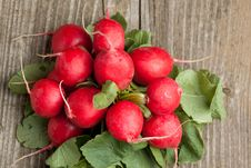 Free Fresh Radishes Stock Photos - 19455853