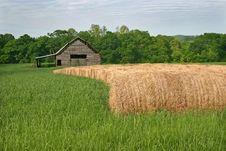 Free Barn & Hay Rolls Stock Photo - 19457070