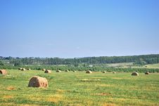 Free Hay Stock Photo - 19457270