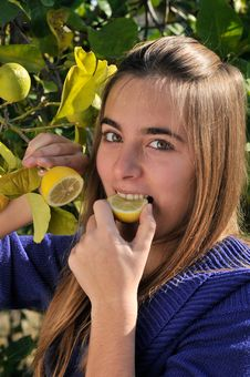 Free Girl Eating A Lemon Stock Photo - 19459760
