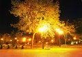 Free City Park At Night Royalty Free Stock Photos - 19461458