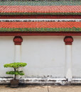 Free Temple S Wall Stock Images - 19467214