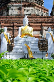 Free Statue In Ayutthaya Stock Images - 19460974