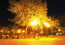 Free City Park At Night Royalty Free Stock Photos - 19461458