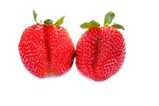 Free Two Fresh Red Strawberries Royalty Free Stock Photos - 19462698