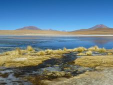 Free Lagoon On The Altiplano, Bolivia. Royalty Free Stock Photo - 19463195