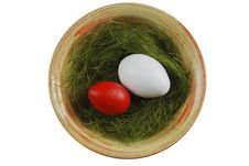 Free Two Eggs In A Plate With Green Grass Royalty Free Stock Images - 19463859