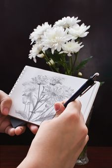 Free Sketch Of Flowers Stock Images - 19464304