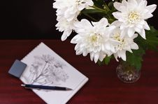 Free Sketch Of Flowers Stock Photo - 19464310