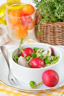 Fresh Salad. Royalty Free Stock Images